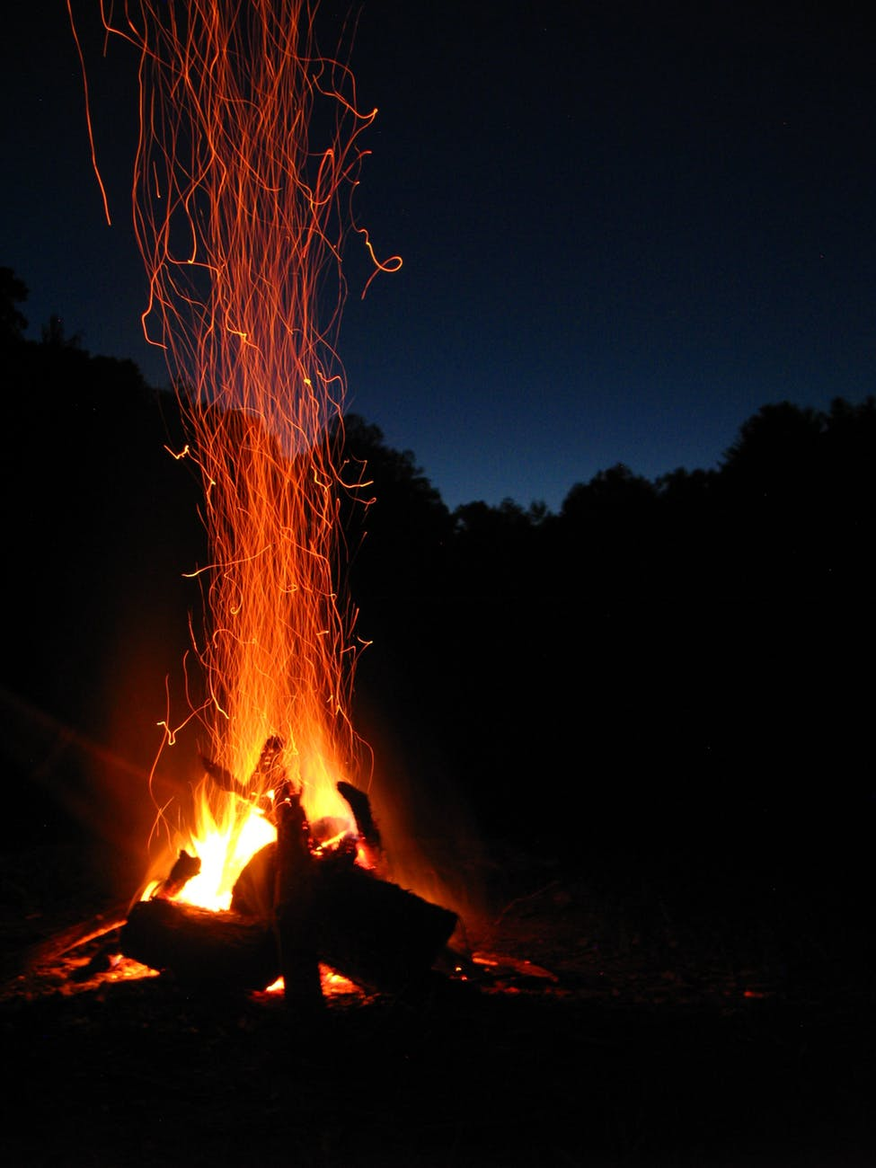 pexels-photo-266416.jpeg